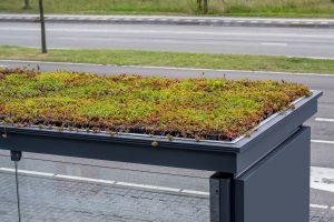 Groendak is op meerdere type daken toepasbaar